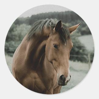 vintage horse animal painting art classic round sticker