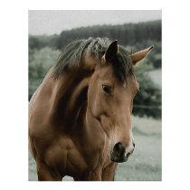 vintage horse animal painting art letterhead
