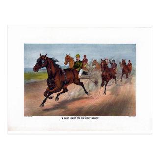 Vintage horse carriage racing print postcard
