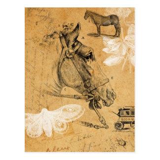 Vintage Horse Postcard