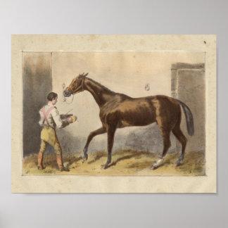 Vintage Horse Print 1873 Thormanby
