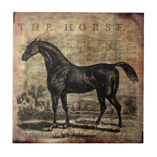 Vintage Horse Thoroughbred and Arabian Horses Ceramic Tile