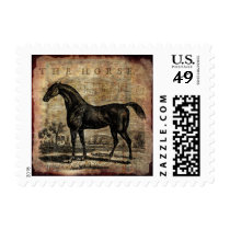 Vintage Horse Thoroughbred and Arabian Horses Postage