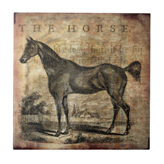 Vintage Horse Thoroughbred and Arabian Horses Ceramic Tiles