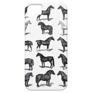 Vintage Horses iPhone Case iPhone 5/5S Cases
