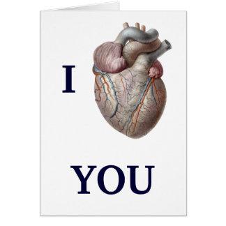 Vintage Human Anatomy, I Heart Love You Greeting Card