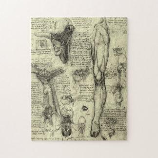 Vintage Human Anatomy Larynx Leg Leonardo da Vinci Jigsaw Puzzles