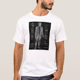Vintage - Human Anatomy Muscles - Black T-Shirt