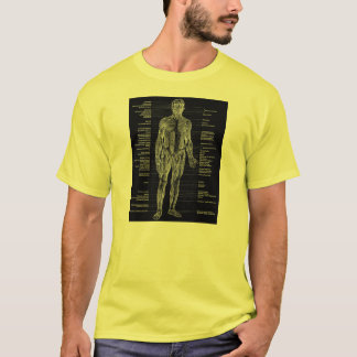 Vintage - Human Anatomy Muscles Front & Back Black T-Shirt