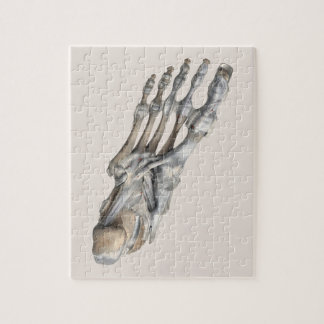 Vintage Human Anatomy Science, Skeleton Feet Jigsaw Puzzle