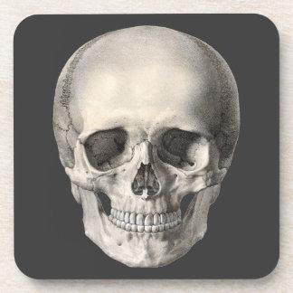Vintage Human Anatomy Skull, Halloween Skeleton Beverage Coaster