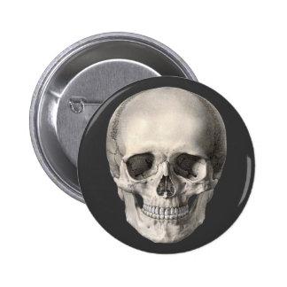 Vintage Human Anatomy Skull, Halloween Skeleton Button