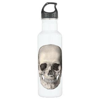 Vintage Human Anatomy Skull, Halloween Skeleton Stainless Steel Water Bottle