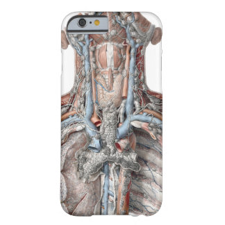 Vintage Human Anatomy Throat, Neck, Chest, Ribs Barely There iPhone 6 Case