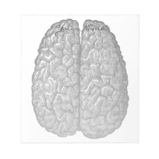 Vintage Human Brain Illustration Notepad