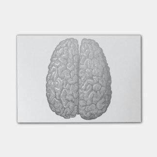 Vintage Human Brain Illustration Post-it® Notes