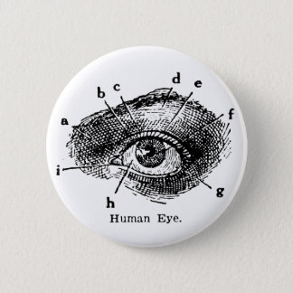 Vintage Human Eye Diagram Pinback Button