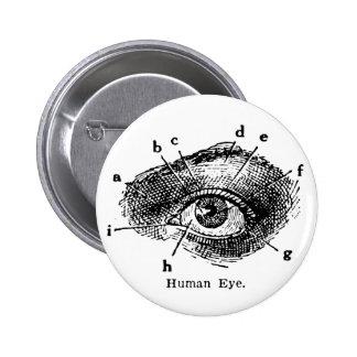 Vintage Human Eye Diagram Pinback Button