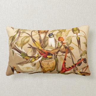 Vintage Hummingbird Bird Hummingbirds Birds  Birds Pillow