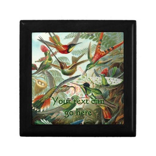 Vintage Hummingbirds Gift Box