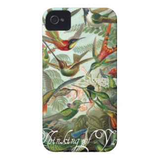 Vintage Hummingbirds IPod Case