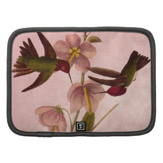 Vintage Hummingbirds Organizer