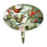 Vintage hummingbirds scientific illustration cake topper