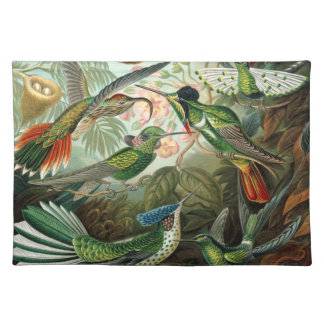 Vintage hummingbirds scientific illustration cloth placemat