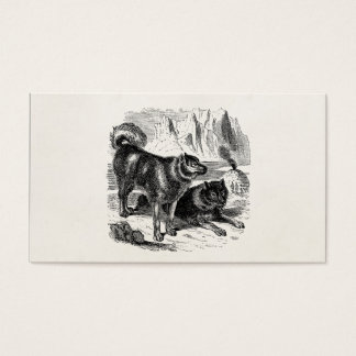 Vintage Husky Sled Dog 1800s Huskies Alaskan Dogs Business Card
