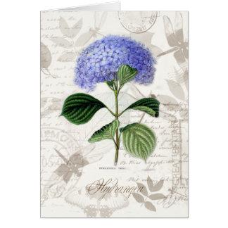 Vintage Hydrangea Greeting Card