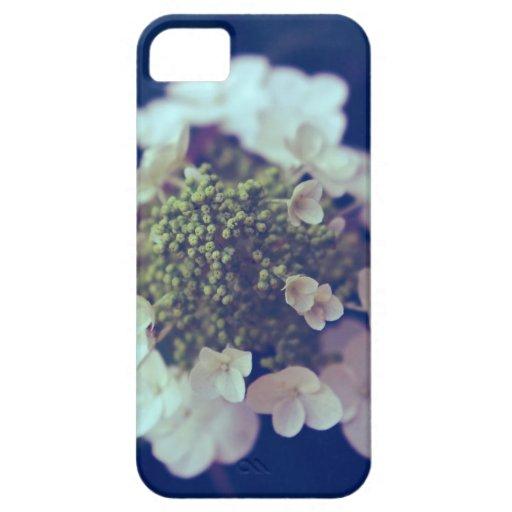 Vintage Hydrangea iPhone 5 Case