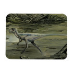 Vintage Hypsilophodon Dinosaur Rectangle Magnets