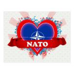 Vintage I Love Nato Postcard