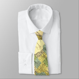 Vintage Illinois Map in Yellows and Greens Tie