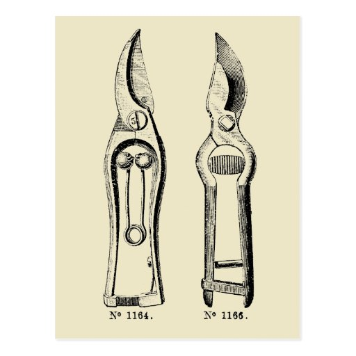 Vintage illustration gardening tool pruners p postcard for Gardening tools 6 letters