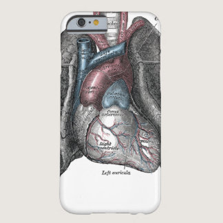 Vintage Illustration Gray's Anatomy Heart Lungs Barely There iPhone 6 Case