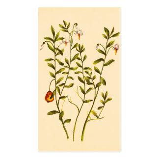 Vintage Illustration of a Cranberry Plant Business Card