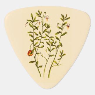 Vintage Illustration of a Cranberry Plant Guitar Pick
