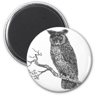 Vintage Illustration of an owl sitting on a branch 2 Inch Round Magnet