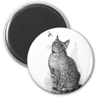 Vintage illustration of Cat watching an Insect 2 Inch Round Magnet