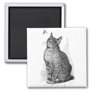 Vintage illustration of Cat watching an Insect 2 Inch Square Magnet