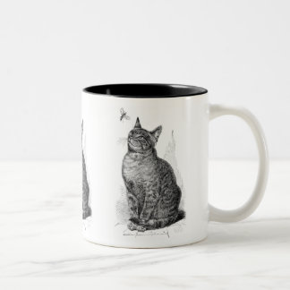 Vintage illustration of Cat watching an Insect Two-Tone Coffee Mug