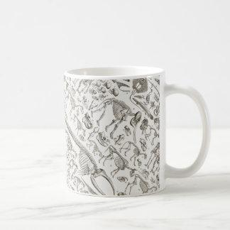 Vintage Illustration of Human & Animal Bones Coffee Mug