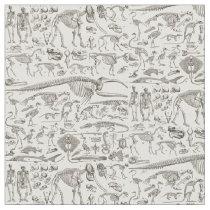 Vintage Illustration of Human & Animal Bones Fabric