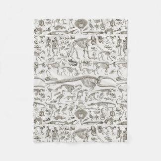 Vintage Illustration of Human & Animal Bones Fleece Blanket