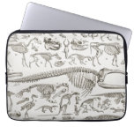 Vintage Illustration of Human & Animal Bones Laptop Sleeve