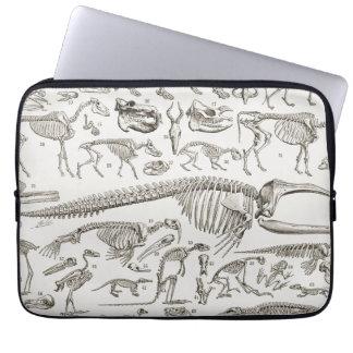 Vintage Illustration of Human & Animal Bones Laptop Computer Sleeves