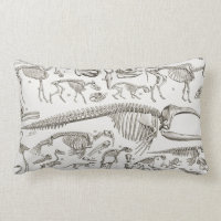 Vintage Illustration of Human & Animal Bones Lumbar Pillow