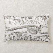 Vintage Illustration of Human & Animal Bones Lumbar Pillow
