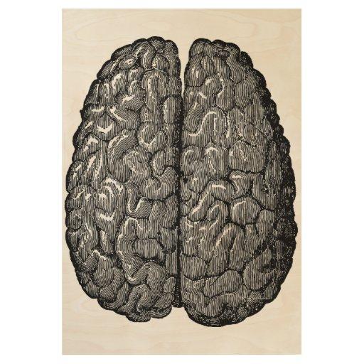 Vintage Illustration of Human Brain Wood Poster